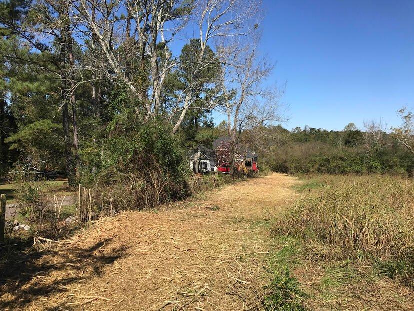 bush hogging